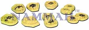Animal Cell Mitosis Zoology Model Set of 8