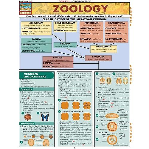Zoology Charts