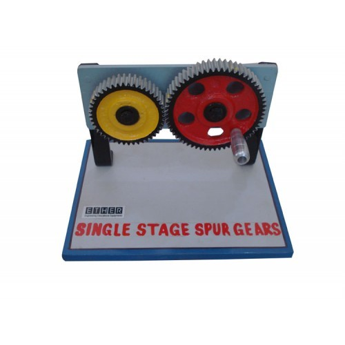 Spur gear and gear model